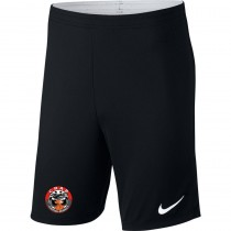Short Junior Nike Academy 18